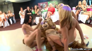 Three girls fucking dancing bear