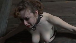 Torturing a small playgirl